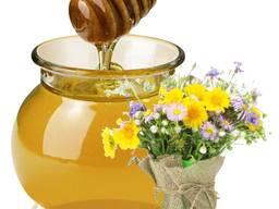 Куплю мед разнотравье АМЕДА ГРУП