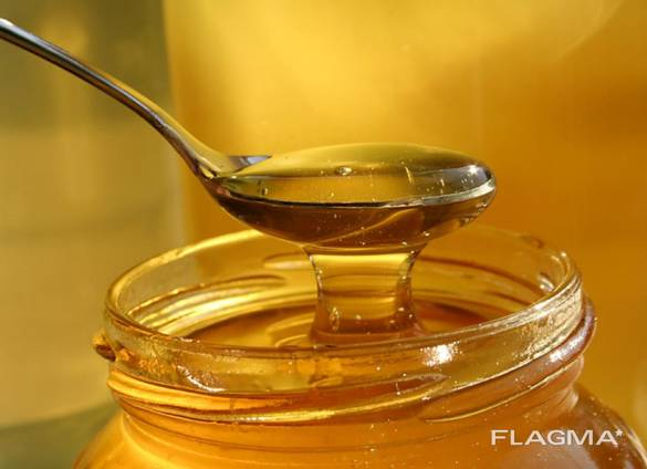 Куплю мёд дорого, расчёт на месте.