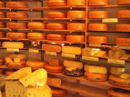 Куплю оптом сир та сирний продукт у виробника