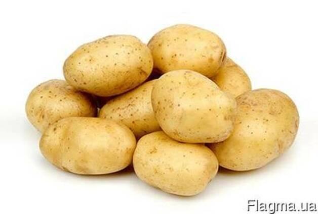Куплю отходы картофеля