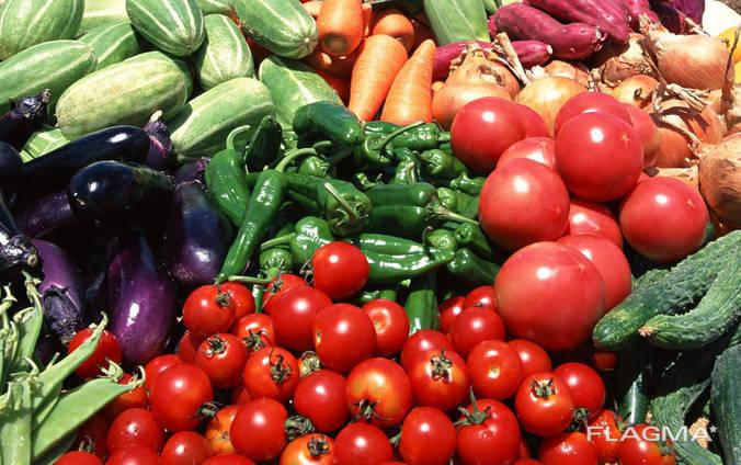 Куплю овощи. Оптом крупными обьёмами.