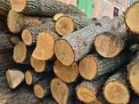 Куплю постійно дуб дрова т/с і сорт D все що є - фото 10