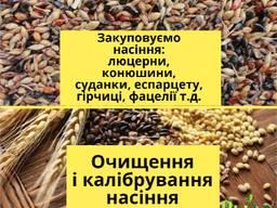Куплю семена кормовых трав: люцерны, клевера, горчицы, фацелии, эспарцета