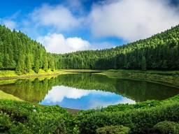 Куплю участок від 12 соток до 90 лес, вода