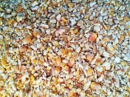 Куплю відходи кукурудзи, не кондиція, крупка, мучка.