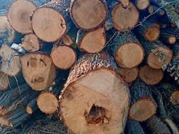 Купуєм дрова дуб
