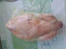 Мясо. Курица тушка домашняя