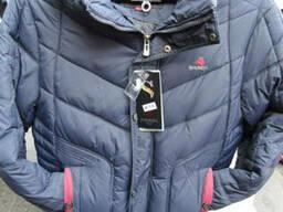 Куртка утепленная мужская с резинкой. Разные цвета.
