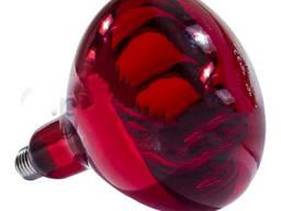 Лампа инфракрасная R125 250 Вт полностью красн. LO