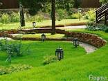 Ландшафтный дизайн - фото 3