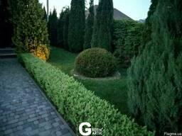 """Ландшафтный дизайн, ландшафтное проектирование """"Green Garth"""""""