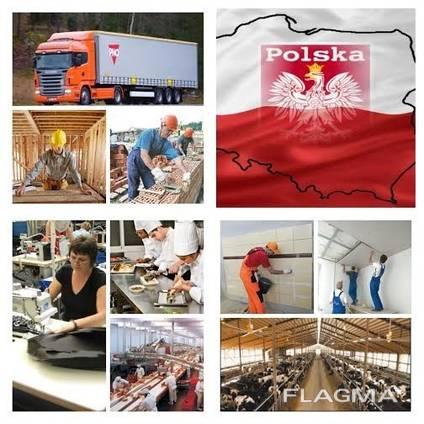 Легальное трудоустройство в страны ЕС