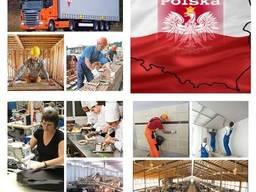 Легальное трудоустройство в страны ЕС - фото 1