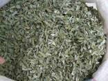 Лекарственные растения ,продажа. - фото 1