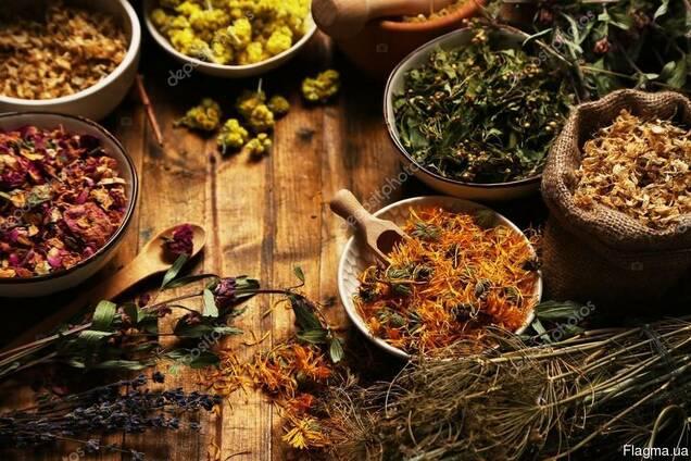 Лекарственные травы (4)