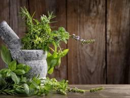 Лекарственные Травы и плоды