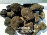 Леонардит для рекулитивации и восстановления плодородия земл - фото 4