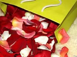 Лепестки роз для свадьбы, романтики, декора
