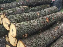 Дрова дубовые от 650 грн. с доставкой