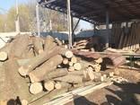 Лес куплю Кругляк Дуб, Ясень, Сосна , Любой !!!от метра - фото 3