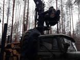 Лесозаготовка - фото 1