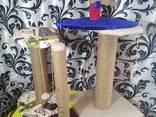 Лежаки-трансформеры, сумки-переноски, когтедралки (дралки, когтеточки). - фото 2