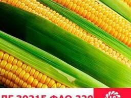 ЛГ 30215 кукуруза купить, ЛГ 30215 цена