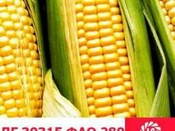 ЛГ 30315 кукуруза купить, ЛГ 30315 цена