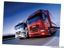 Лицензия на автомобильные перевозки
