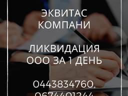 Ліквідація ТОВ за 1 день. Допомога в ліквідації підприємства Дніпро