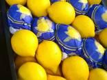 Лимон - photo 3