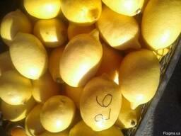 Лимон от производителя