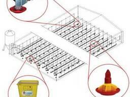 Линии напольного кормления бройлера (индюка, утки) CODAF