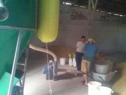 Лінія для приготування гранул