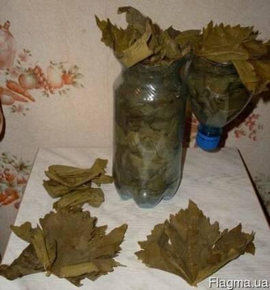 Листья виноградные для долмы, голубцов, сармы
