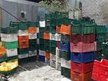 Лом ящика пластикового ПНД и ПП - photo 1