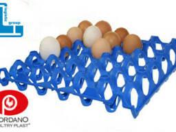Лотки для куриных яиц пластиковые Jumbo 65-75 г