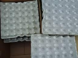 Лотки для яиц бугорчатая прокладка