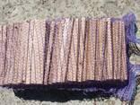 Лучина дубовая, дрова мелкие для розжига и растопки брикет - фото 1