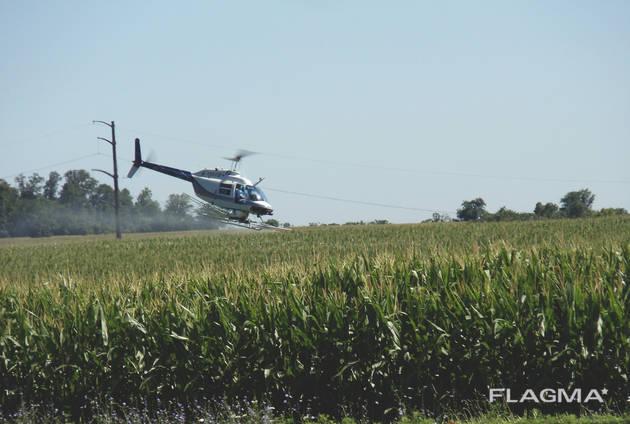 Луговой мотылек - борьба с его гусеницей вертолётом