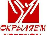 Конкурентный анализ в Крымском Федеральном округе РФ - фото 1