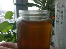 Масло из семян черного тмина, льна, кунжута, конопли, тыквы