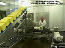 Масло сливочное 72,5% оптом ГОСТ доставка за наш счет!