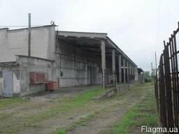 Маслозавод 1.150 м.кв., 120 соток, с. Кремидовка