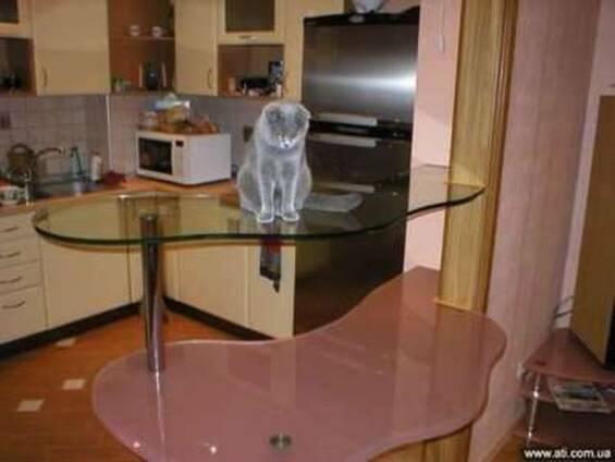 Мебель из стекла и зеркала на любой вкус