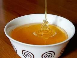 Мед, майский разнотравье, высшего качества