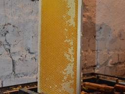Мед собственной заготовки