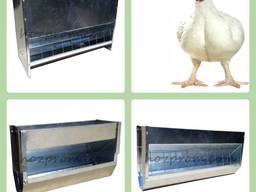 Металеві годівниці для бройлерів та іншої домашньої птиці