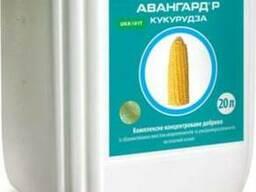 Мікродобрива Авангард Кукурудза