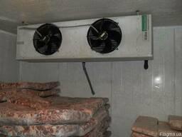 Монтаж камер заморозки и хранение рыбы.